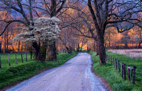 Morning on Sparks Lane - Cades Cove